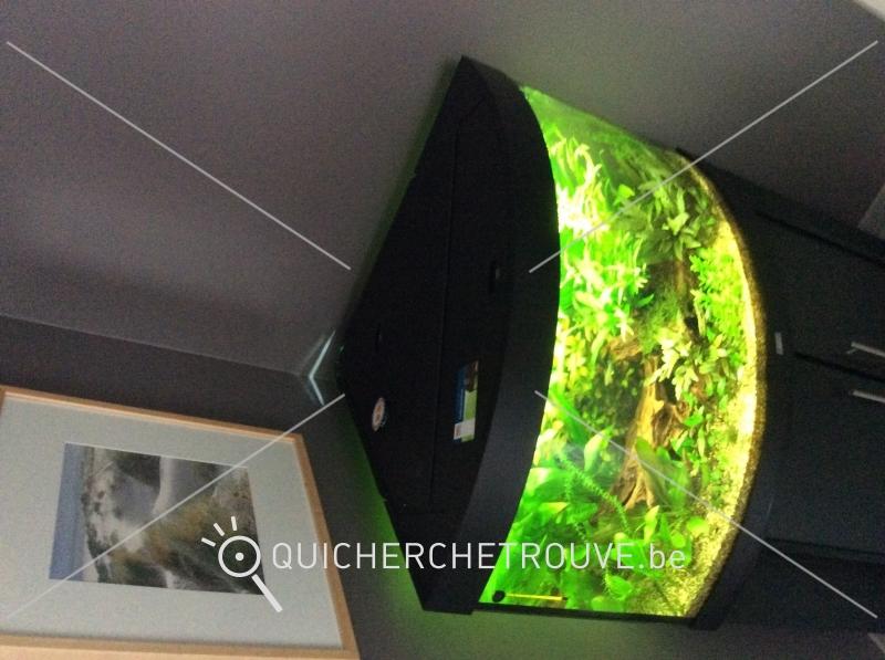 meuble tv a vendre liege – Artzeincom -> Meuble Tv Grande Longueur Vendre